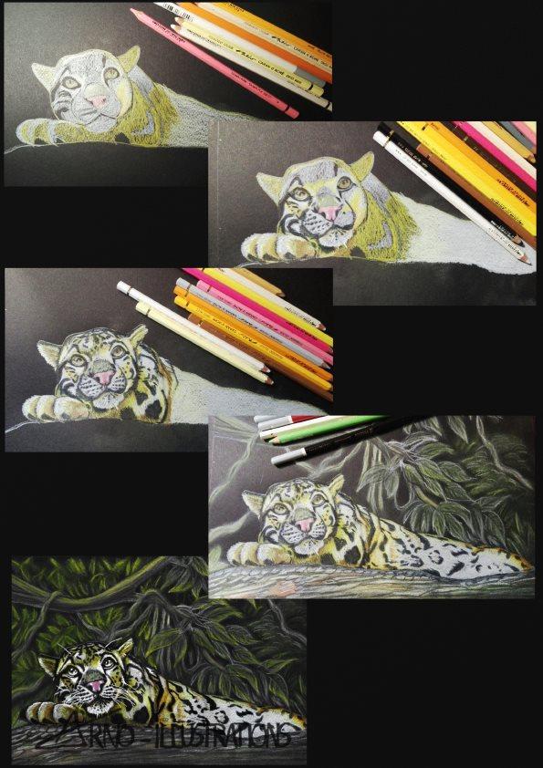 panthére nebuleuse pas à pas crayons de couleurs pastels